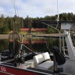 Video: Haida Gwaii Fishing