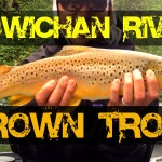 Cowichan River Fishing – Brown Trout Fishing Report